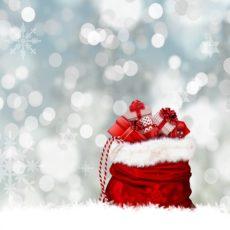 Féerie (gustative) de Noël